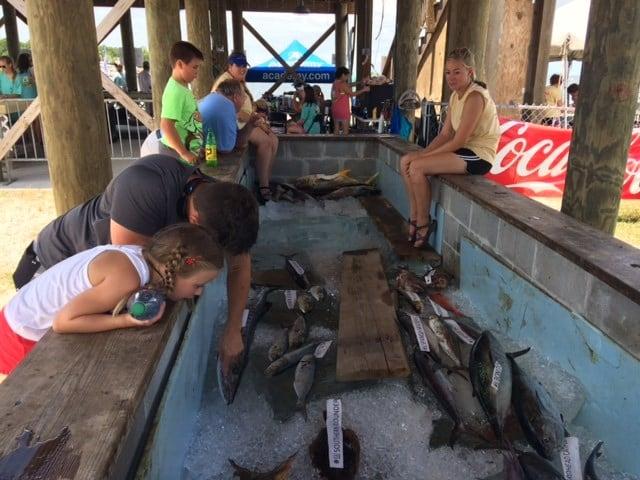 Alabama deep sea fishing rodeo underway wmc action news for Deep sea fishing mobile al