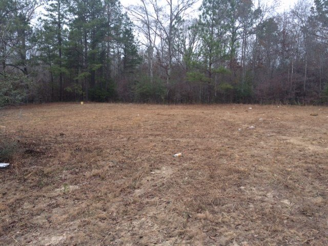 This is the property where the fights took place. It is in a clearing behind an abandoned home on Highway 45 -- about a mile east of Mississippi State Line.