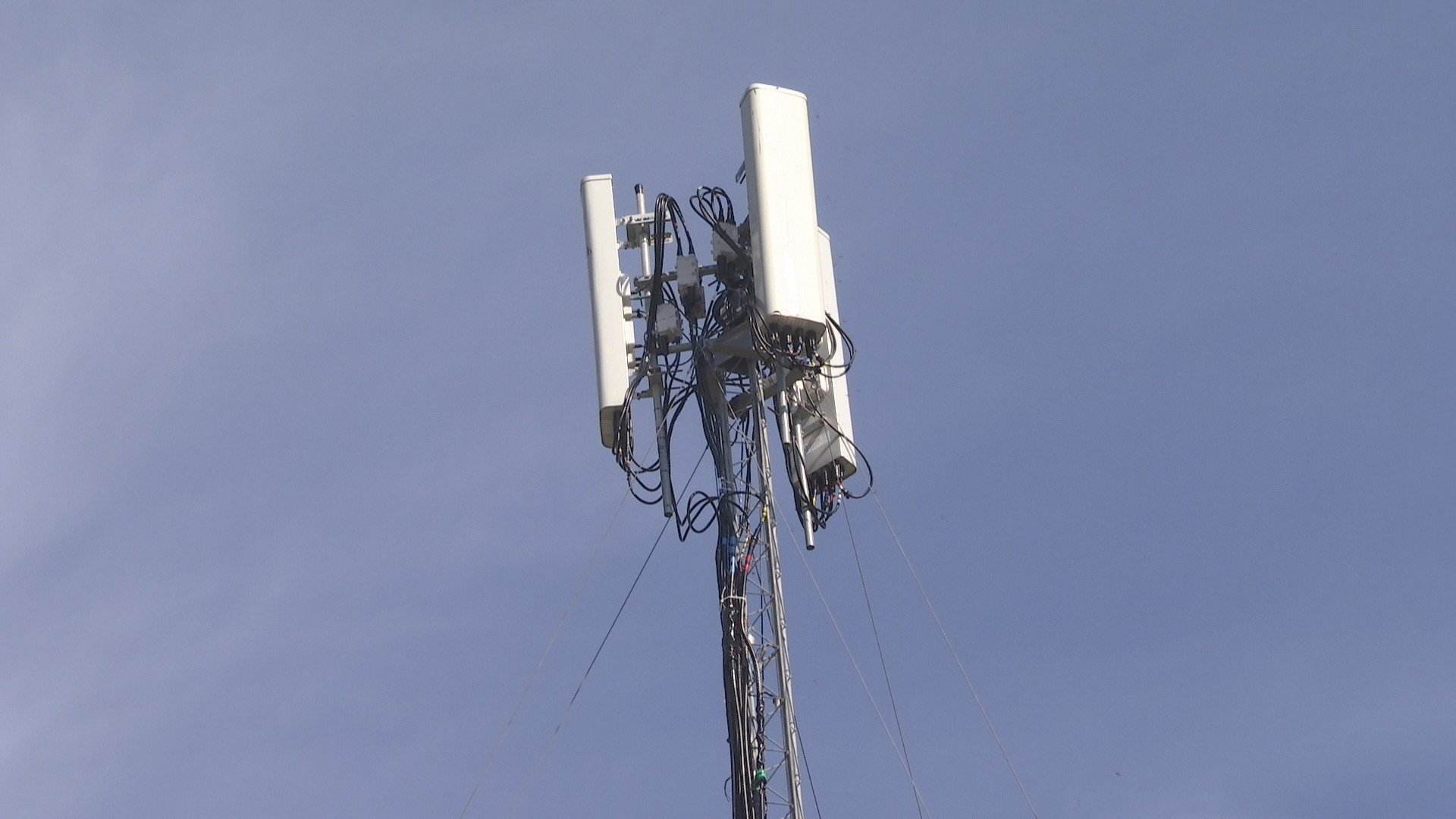 Temporary cell phone tower (Photo: FOX10 News)
