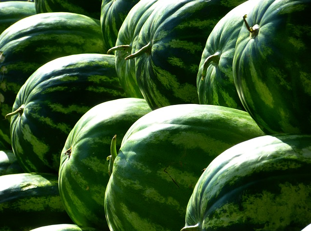 An Alabama man who said he tripped and broke his hip while buying a watermelon at a Walmart store has won a $7.5 million verdict in his lawsuit against the retailer.  Photo: Pixabay