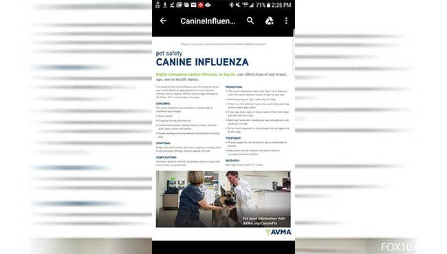 The Parvin Animal Clinic in Spanish Fort says that they have learned of a case of Canine Influenza Virus, or dog flu, on the Eastern Shore. Photo: Parvin Animal Clinic