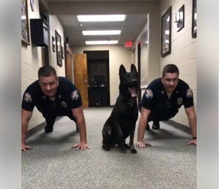 Check out this awesome video of a K-9 member and other officers of the Gulf Shores Police Department warming up for their evening shift. Photo: Gulf Shores Police Department Facebook.