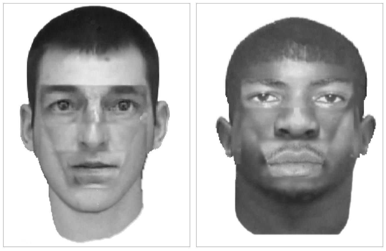 Rape suspects composite sketches (MPD)