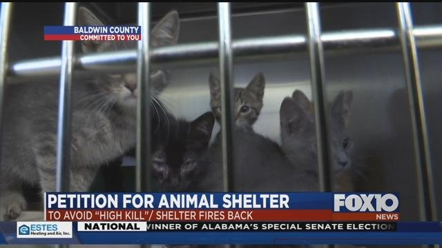 Animal Shelter In Mobile Al : Group claims baldwin county animal shelter becoming quot high