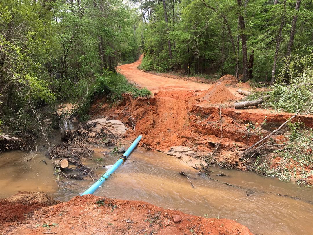 Photos Severe Storms Cause Damage Across Area Fox10 News Wala
