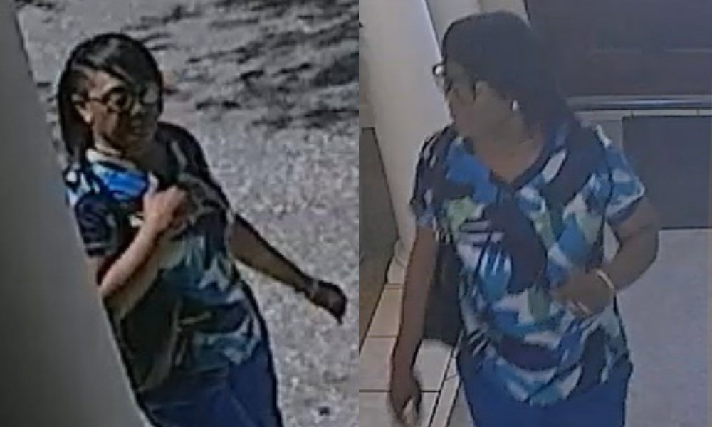 Police Said Sheritta Sawyer Is The Nursing Home Burglary Suspect Pictured  In These Images. (