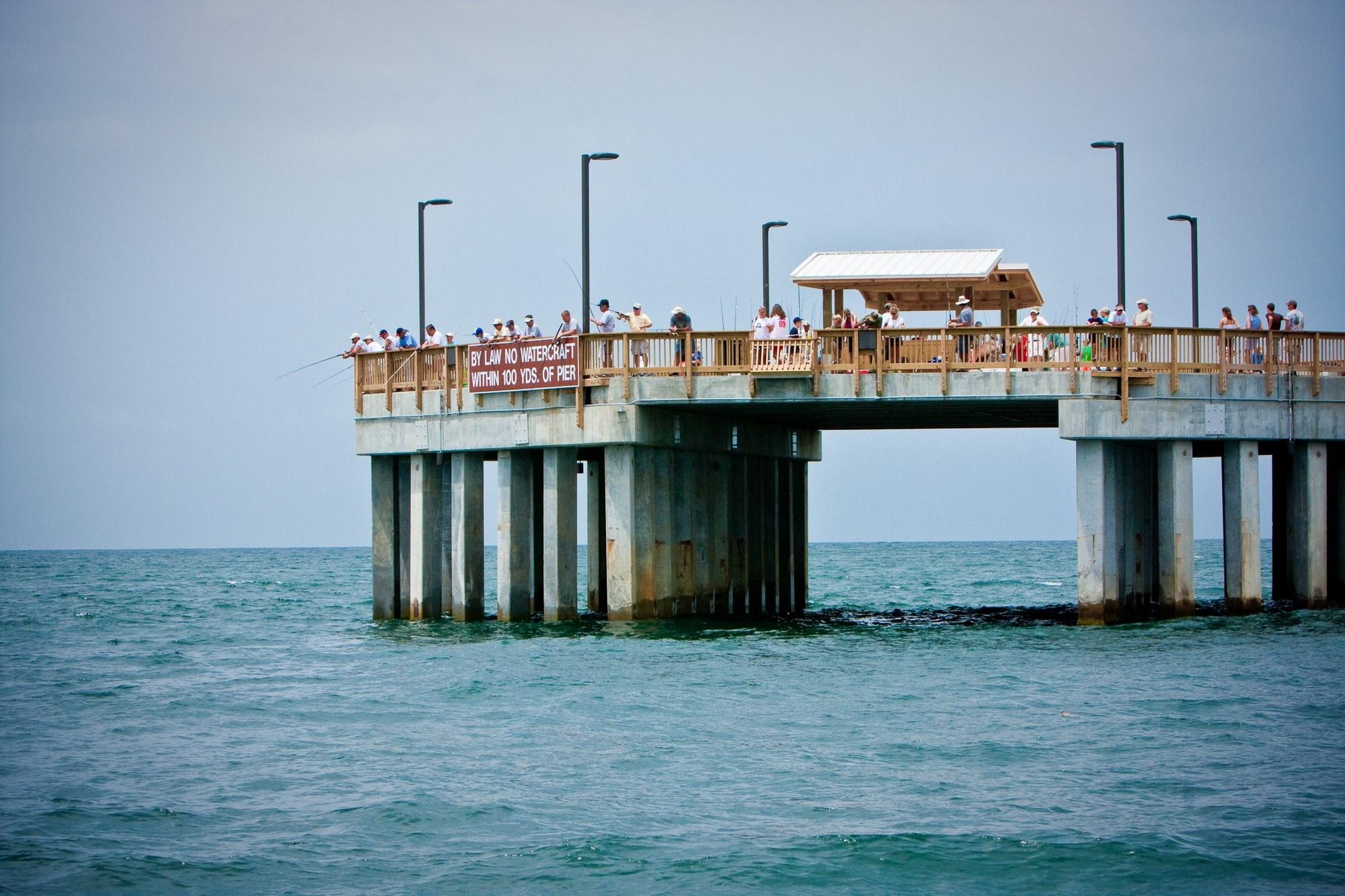 Gulf pier shark fishing expands wmc action news 5 for Fishing in memphis