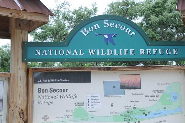© Bon Secour National Wildlife Refuge