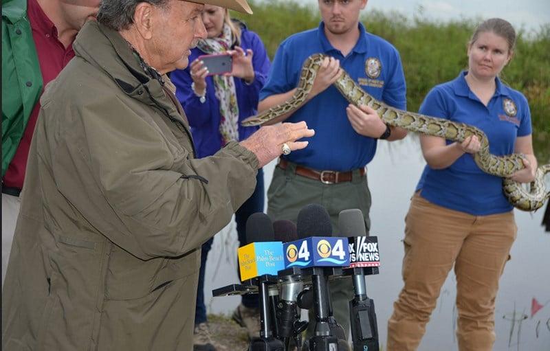 Florida Burmese Python Hunting Challenge Captures 106 Snakes