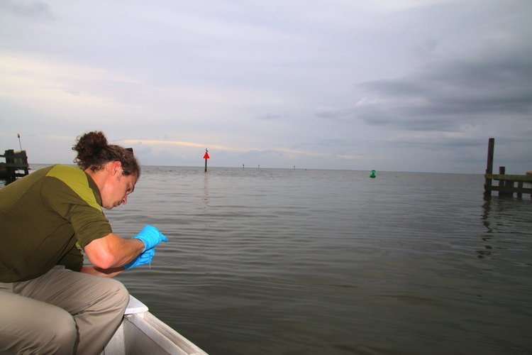 Mobile Baykeeper has officially canceledThe Big Float Eventscheduled for Saturday, August 18 due to water quality issues and weather concerns. Photo: http://www.mobilebaykeeper.org
